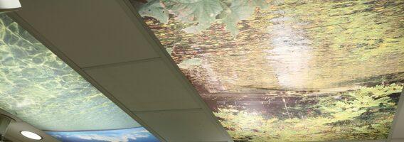 Il soffitto della stanza dell'Acceleratore